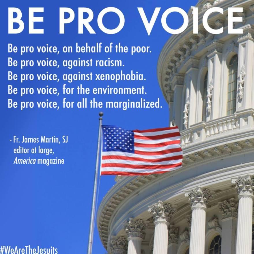 be-pro-voice